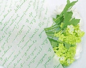 25 Letters Wax Papers - Green (14.5 x 9.8in)