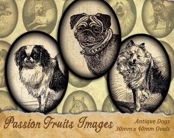 Antique Dogs  Toy  Breeds 30mm x 40 mm Ovals Digital Collage Sheet -- Instant Download