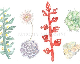 9x7 . NOT A PRINT ..Original Painting Cactus & Co... No.1  OOaK Handpainted ..Watercolour..Succulent