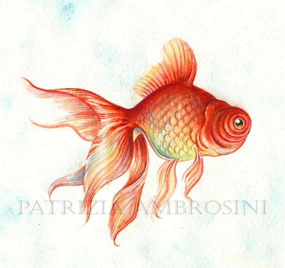 Original 10x8 Watercolour Red Fish. NOT A PRINT ..Original Painting, animal ,fine art,fish,red,water