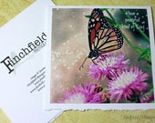 Butterfly, nature photography, fine art photo blank card, square cards, inspirational, fpoe