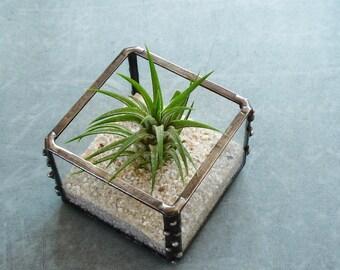 Mini Air Plant Holder, Small Glass Cube Planter, Desk Accessory