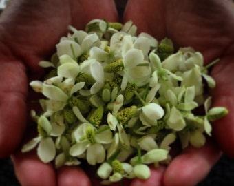 Japanese Dokudami Dry Flower 5g