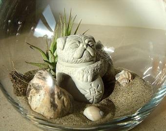 Lucky Pug Foo Dog Sculpture in Zen Garden Air Plant DIY Terrarium