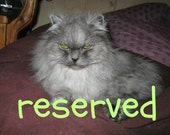 RESERVED, RESERVED, RESERVED for Christine