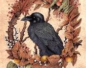 "November Raven 8x10"" Print"