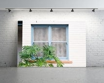 Window Photography, Monstera, FILM Photo, Old Window Frame, Suburbia, Pastel Blue, Green Plant,Curtain, Old House, Windowsill, Frosted Glass