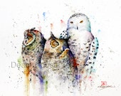 THREE OWLS Watercolor Print by Dean Crouser