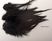 Black Feathers Dyed Black Rooster Feathers Black Craft Feathers Dyed Black Craft Supplies Feather Supplies Black Saddle Feathers, QTY24