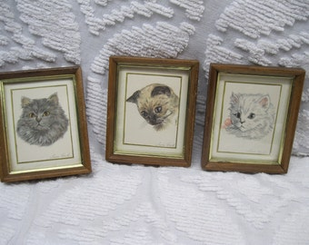 1960s Set of 3 Framed Cat Pictures Paintings by Susan Earle