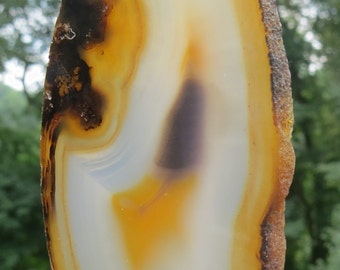 Suncatcher-Banded Agate-Window or Garden Ornament with Gemstone such as Shell, Bone, Tigereye, Garnet and Botswana Agate