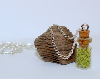Wolf Lichen Moss in Tiny Bottle Necklace