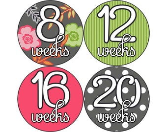 Pregnancy Stickers, Pregnancy Announcement, Weekly Stickers, Belly Stickers, Maternity Photo Prop, Belly Bump Stickers, M2M (G109-P)