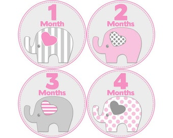 Monthly Stickers, Girls Photo Props, Monthly Baby Stickers, Monthly Baby Photos, Baby Gift, Milestone Stickers, Elephants (G075)
