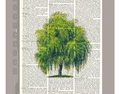 Weeping Willow - Artwork on a page from vintage Dictionary -Upcycled Book Print