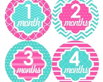 Baby Monthly Stickers FREE Baby Month Milestone Sticker Baby Month Stickers Baby Girl Bodysuit Stickers Baby Gifts Hot Pink Turquoise 057G