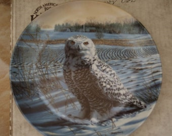 The Snowy Owl Collectible Plate Decorative Plate Owl plate, gift for him, man cave Home Decor Christmas Gift