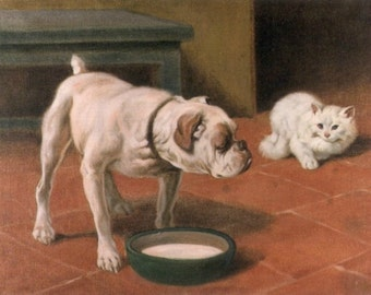 The Bulldog and the Cat - Cross stitch pattern pdf format