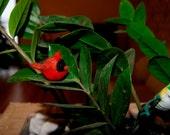 Felted cardinal bird, felt toy bird, super tiny, cardinal miniature, natural toy, soft sculpture, bird miniature