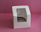 Cupcake Box for Cupcakes or Other Party Favors