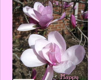 Light pink duct tape etsy magazine bag duct tape ana delight magnolia happy anniversary aloadofball Choice Image