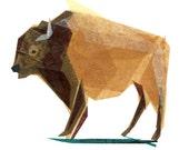 Jasper Buffalo - Animal Art Print