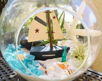 Sailboat Beach Terrarium Kit ~ Sail boat ~ Large Glass Terrarium ~ 3 Air Plants ~ Beach Decor ~ Sea Shells and Starfish ~ Coke ~ Gift idea