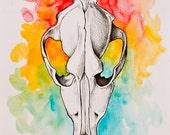 Dog Skull - Original Watercolor and ink painting
