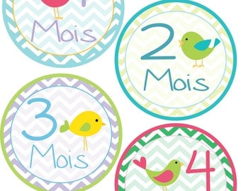 French - Monthly Bodysuit Stickers - Birds and Chevrons - For a baby girl 1-12 months -  Perfect Gift for Mom to Be