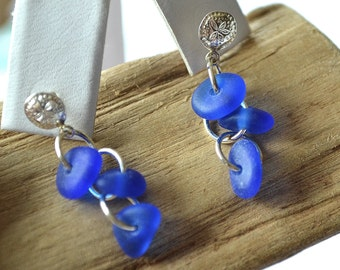 Sand dollar stud earrings with cobalt blue sea glass