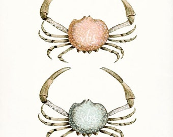 Two Antique French Crabs Natural History Coastal Decor Giclee Art Print 8x10