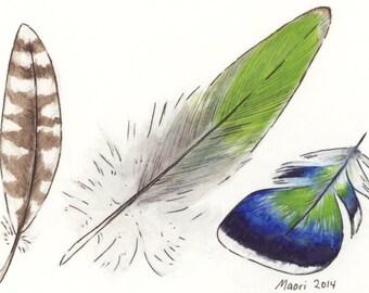ACEO Feather Study giclée print / Art Card