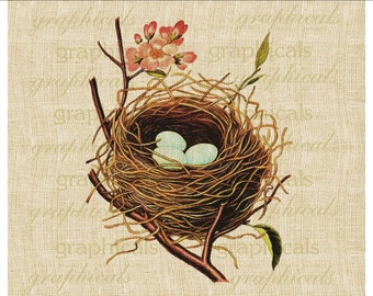 Spring bird nest blue eggs instant graphic download image for paper, decoupage iron on fabric transfer burlap pillows tote bags No. 2100