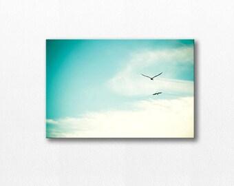 birds flying canvas photography 20x30 birds photography canvas wrap nature photography gallery canvas art canvas print large blue sky teal