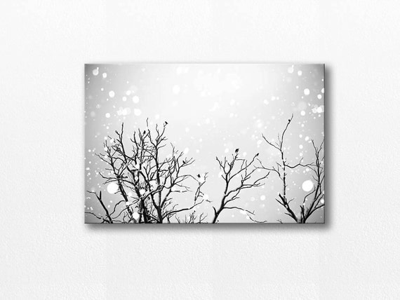 Winter birds canvas print black and white prints birds Black and white canvas art