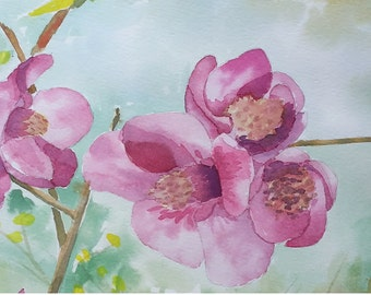 Quince Flower - Original watercolor - free shipping