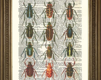 """BUGS INSECT ART Print: Vintage Dictionary Page Wall Hanging (8 x 10"""")"""