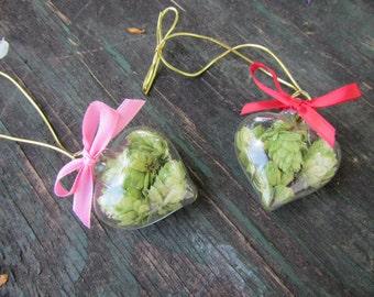 Wedding Hops Ornament, Heart Hops Ornament, Beer Lovers Gift, Hop Wedding Favor, Beer Valentine Ornament, Beer Wedding Favor