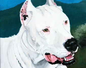 Custom dog portrait, 8x12 canvas, hand painted from your photo, Argentine Dogo portrait