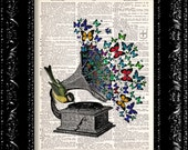 Butterfly Bird Gramophone - Vintage Dictionary Print Vintage Book Print Page Art Upcycled Vintage Book Art