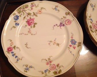 1 Remaining Castleton Sunnyvale Dinner Plate in excellent condition,