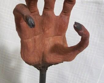 Mummified Hand of a Witch