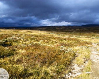 Digital download - photography decor landscape Scandinavia country wilderness mountains Sweden grassland stormy