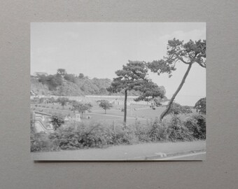 Tall Trees By British Seaside Resort, UK, Black and White, Rustic Home Decor, Country Rustic Home Decor, Wall Art Rustic, Retro Photography