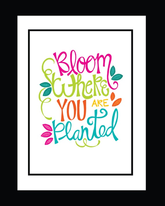 Fine Art Print Bloom Where You Are Planted