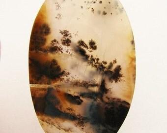 Landscape Natural Dendritic Agate
