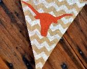 Hook'em Burlap Banner with CHEVRON for University of Texas