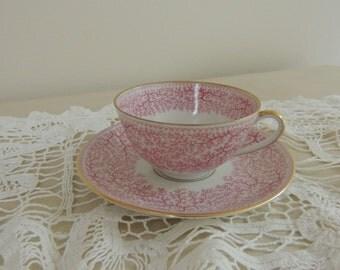 Vintage Furstenberg Porcelain CUP AND SAUCER Park Lane Pattern Pink Fern Made in Germany Romantic Home