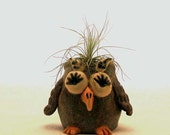 Owl Planter - Ceramic Toothpick Holder - Miniature Kitsch Owl Sculpture - Rustic Q-Tip Container - Ceramic Air Plant Vase - Air Plant Holder