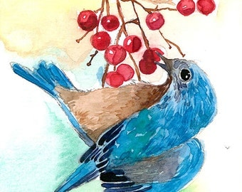 ACEO Limited Edition 2/25- Bluebird eating a red berry